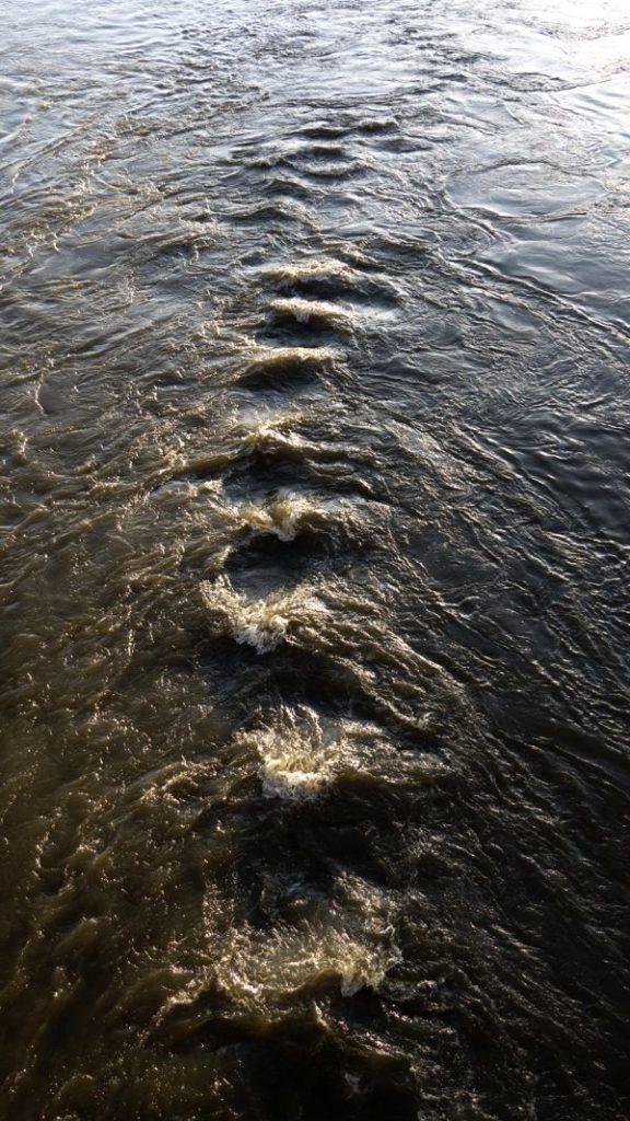 #01_Chemins d'eau
